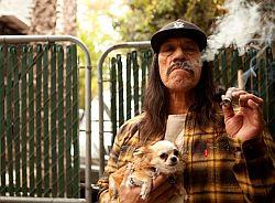 Не все умеют курить сигары